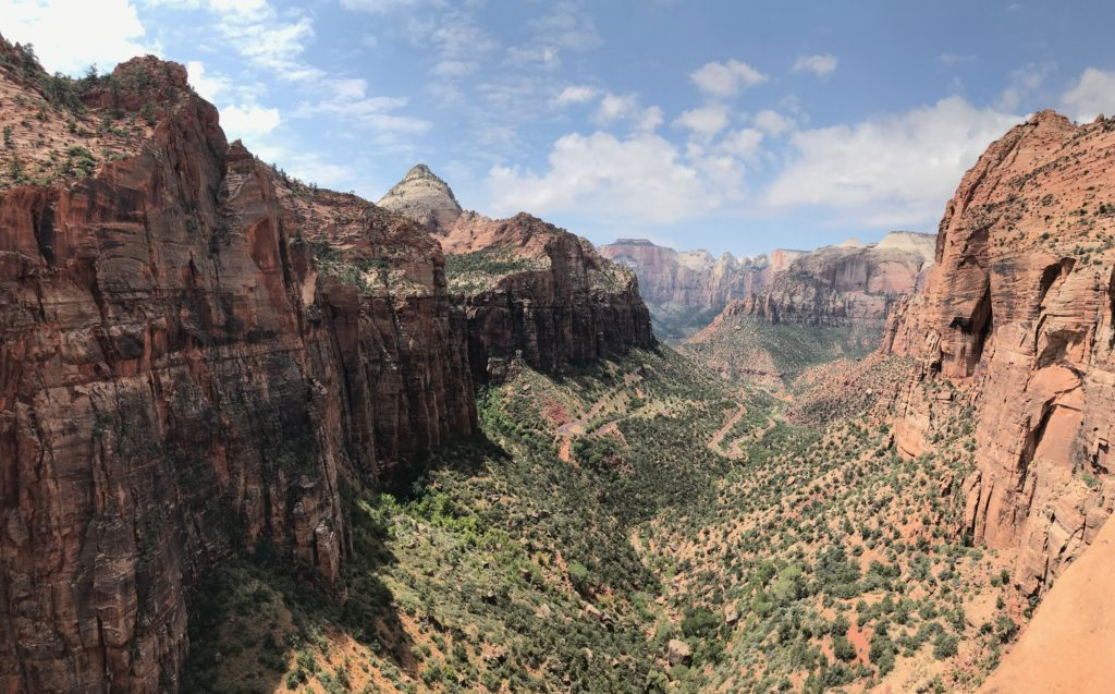 just a picture of zion national park