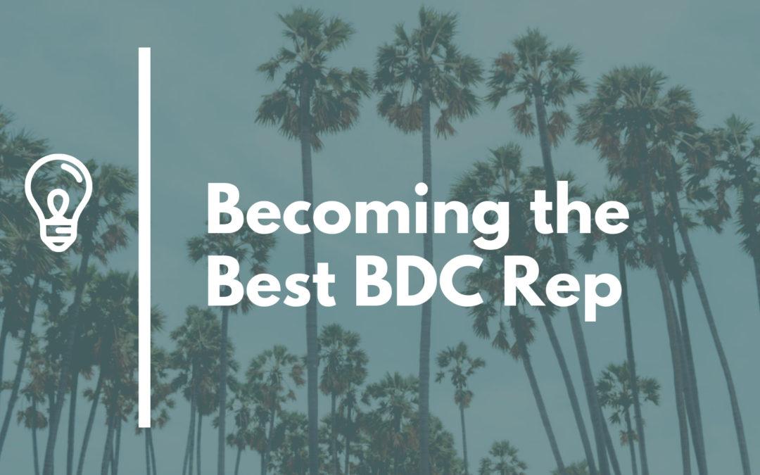How To Be a Good BDC Rep: Mega Post!